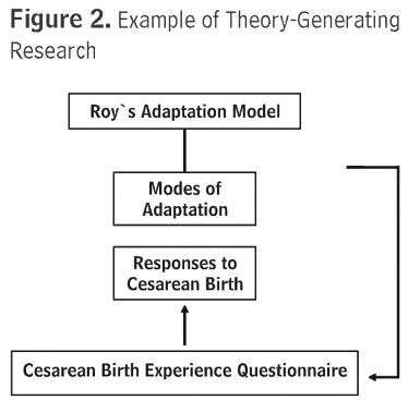critique roy adaptation theory Care deficit theory and sister callista roy's adaptation model are grand theories both developed these to enhance nursing practice and education orem model emphasizes on the individuals demands of self care which the nurse can accomplish through certain actions to promote health and well being however, the adaptation model gives an.