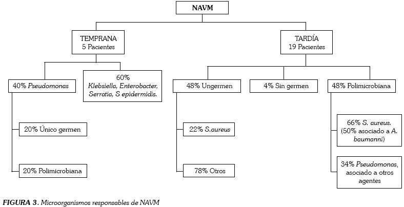 Neumonía asociada a la ventilación mecánica  Artículos